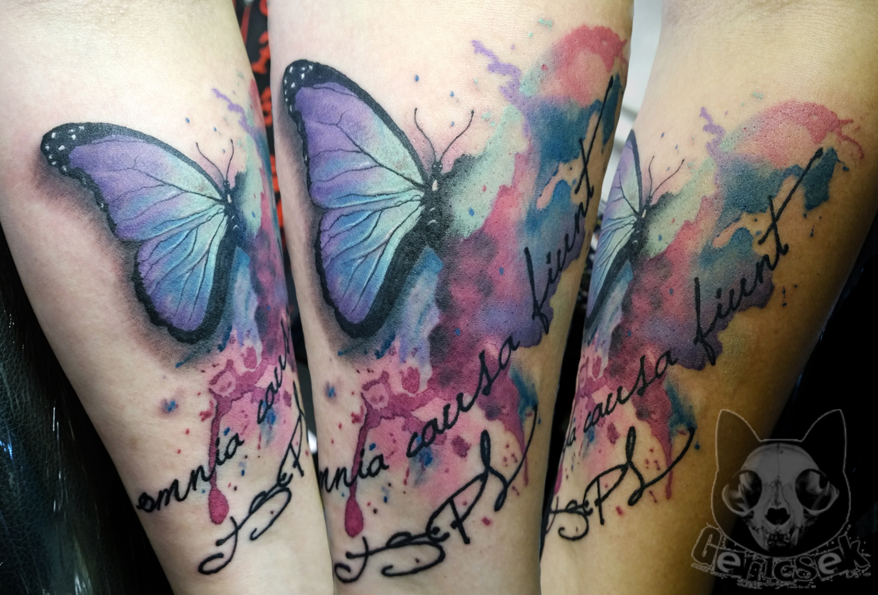 Watercolor Flower Moth Tattoo My Precious Ink: Certified Artist