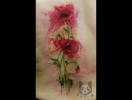 Water  Color  Poppy   Back