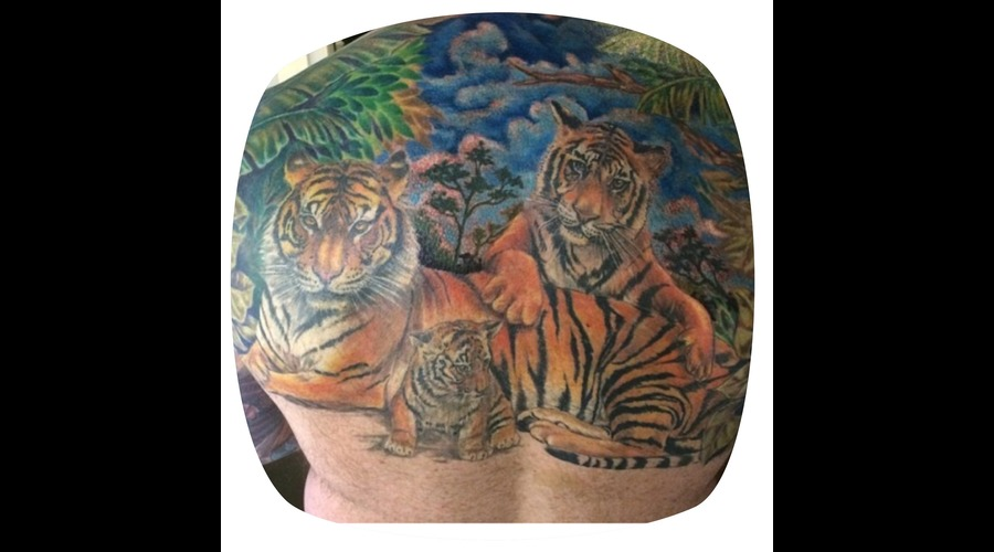 Tiger Tattoos  Family Representation Back