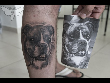 Dog Tattoo  Pet Portrait Tattoo  Black And Gray Portrait Lower Leg
