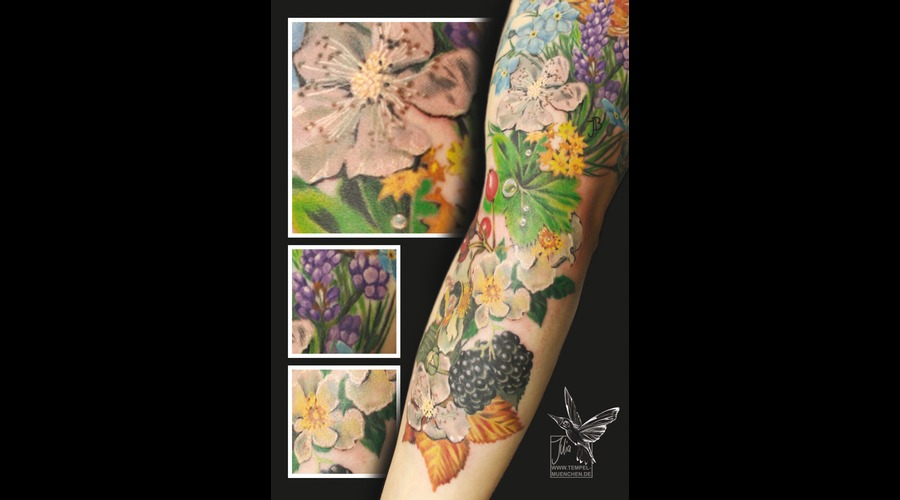 Flowers  Flower  Berries  Herbs  Lavender  Leaves   Color Arm