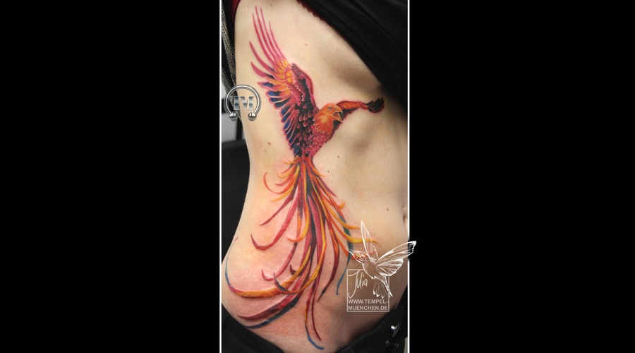 Phoenix  Bird  Wing   Color Ribs