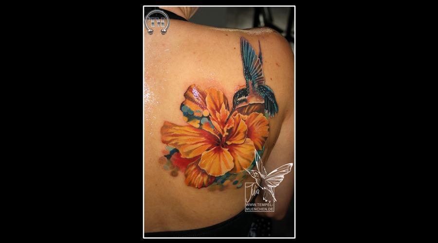 Flower  Hummingbird  Hibiscus  Pixel  Bird   Shoulder