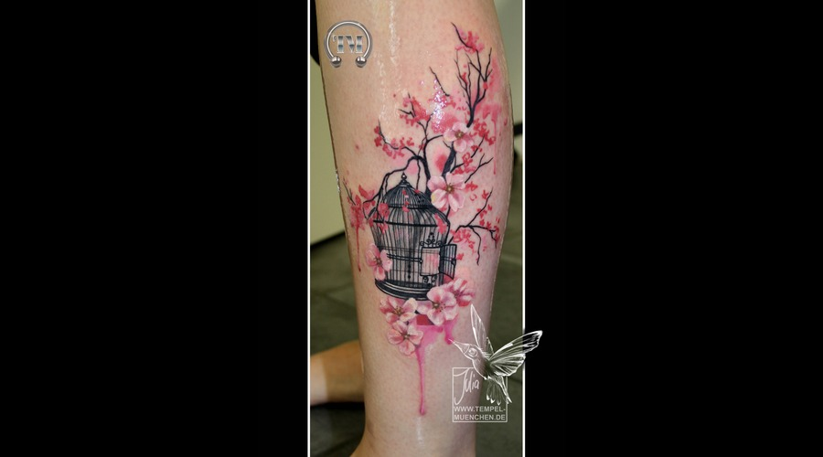 Bird Cage  Cage  Flowers  Watercolor  Pixel  Branch  Cherry Blossom  Color Lower Leg