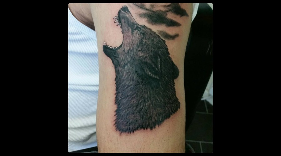 Wolf Wolftattoo Black Grey Arm