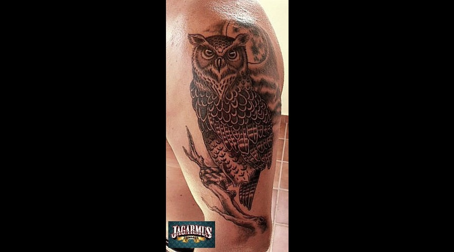 Buho  Owl Shoulder