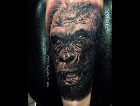 Animal  Wildlife  Gorilla  Monkey  Realism  Realistic Forearm
