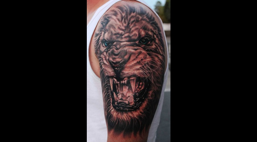 Lion  Black And Grey Black Grey Shoulder