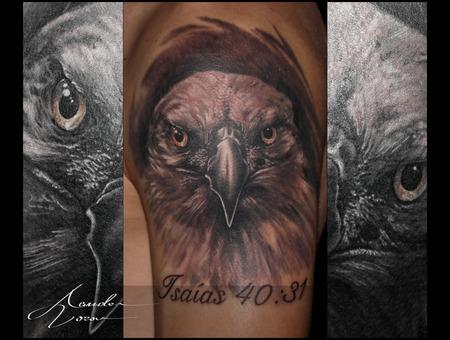 Eagle  Baldeagle  Realistic Shoulder