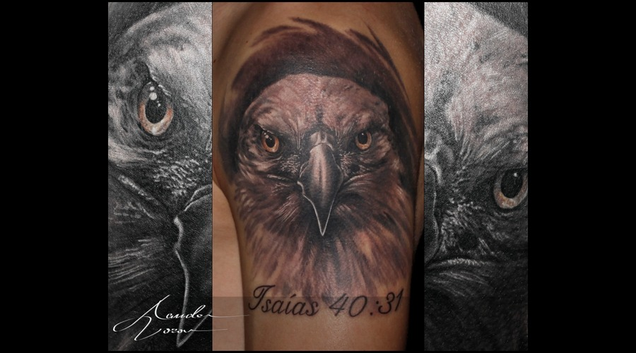 Eagle  Baldeagle  Realistic Shoulder