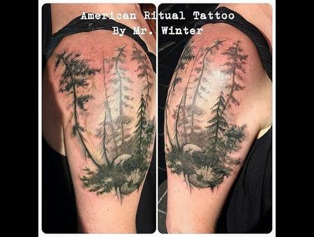 Nature  Pnw  Evergreen  Tree  Watercolor  Blackwork  Washington  420  Weed Arm