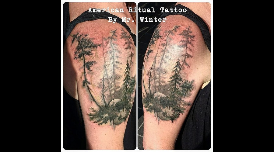 Nature  Pnw  Evergreen  Tree  Watercolor  Blackwork  Washington  420  Weed Arm