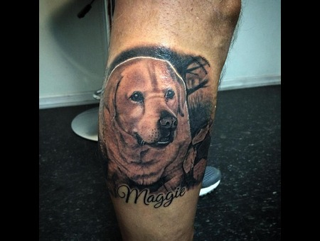Portrait Blackandgrey Dog  Lower Leg