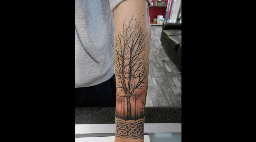 Tree  Forrest  Nature  Branch  Celtic Forearm