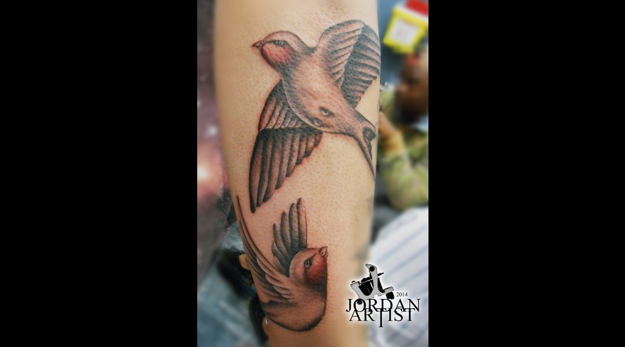 Birds  Wings  Nature  Couple  Sparrow Forearm