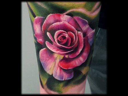 Flower  Rose Arm