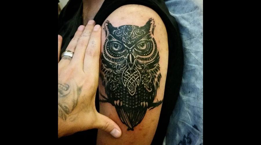 Owl  Berat Bumin Arm