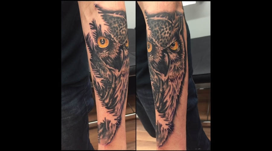 Owl  Realism  Portrait  Black And Grey  Great Horned Owl  Sleeve Forearm