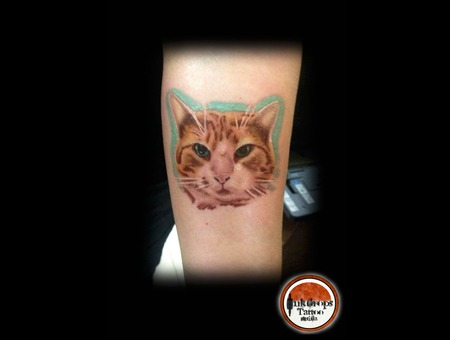 Realism  Cat  Animals  Colored Forearm