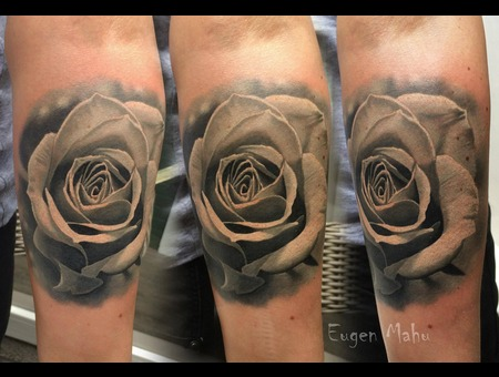 Tattoo  Art  Realistic  Rose Forearm
