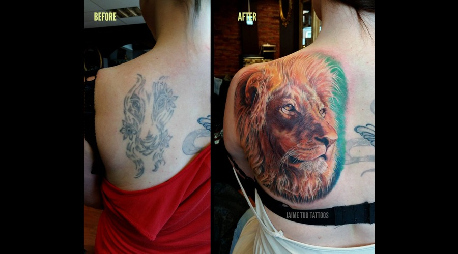 Lion  Cover Up Back
