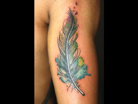 Feather  Pluma Color Arm