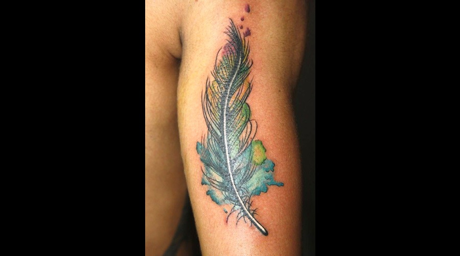Feather  Pluma Color Arm