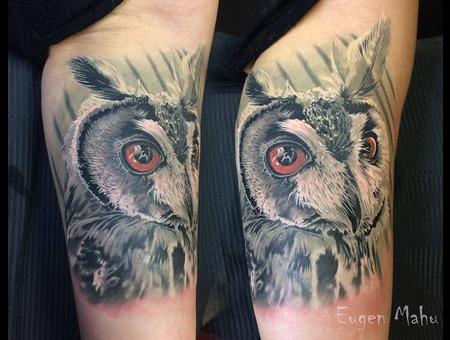 Tattoo  Realistic  Art  Owl Arm
