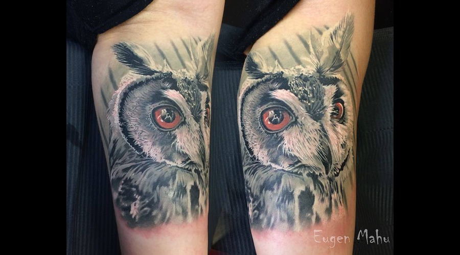 Tattoo  Realistic  Art  Owl Arm