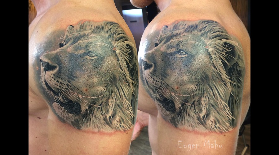 Tattoo  Art  Realistic  Lion Arm