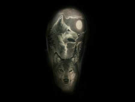Wolf  Black And Grey    Arm