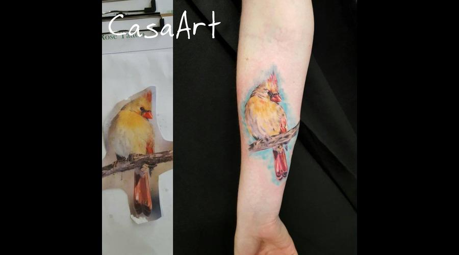 Bird  Realism Forearm