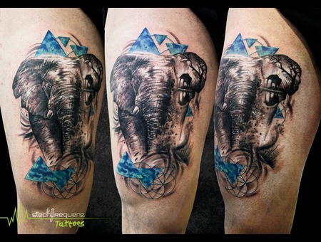 Abstract  Elefant Thigh