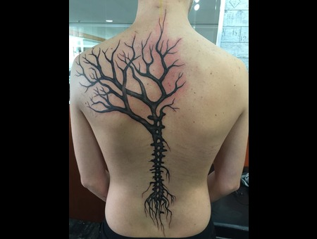 Tree  Spine Back