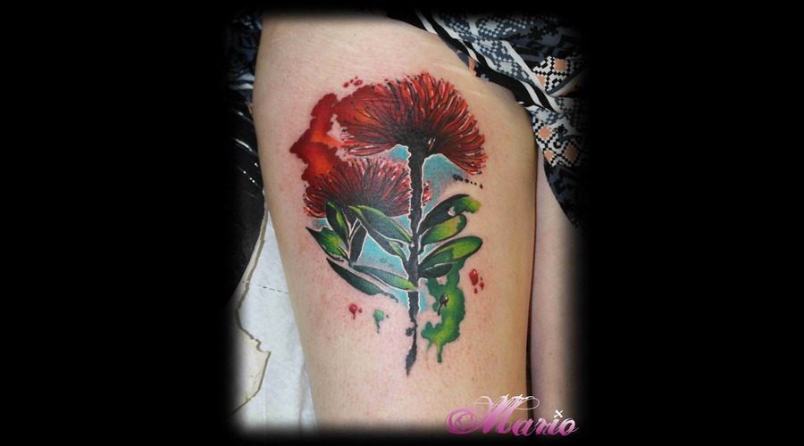 Pohutukawa Flower Color Thigh