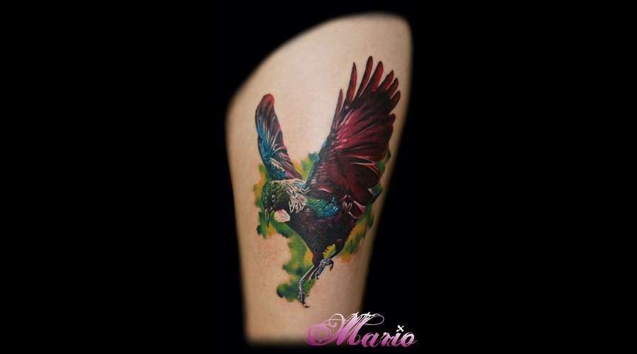 Bird Tui Color Thigh