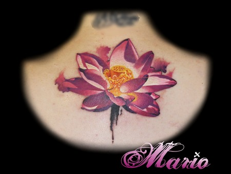 Lotus Flower Tattoo Color Back