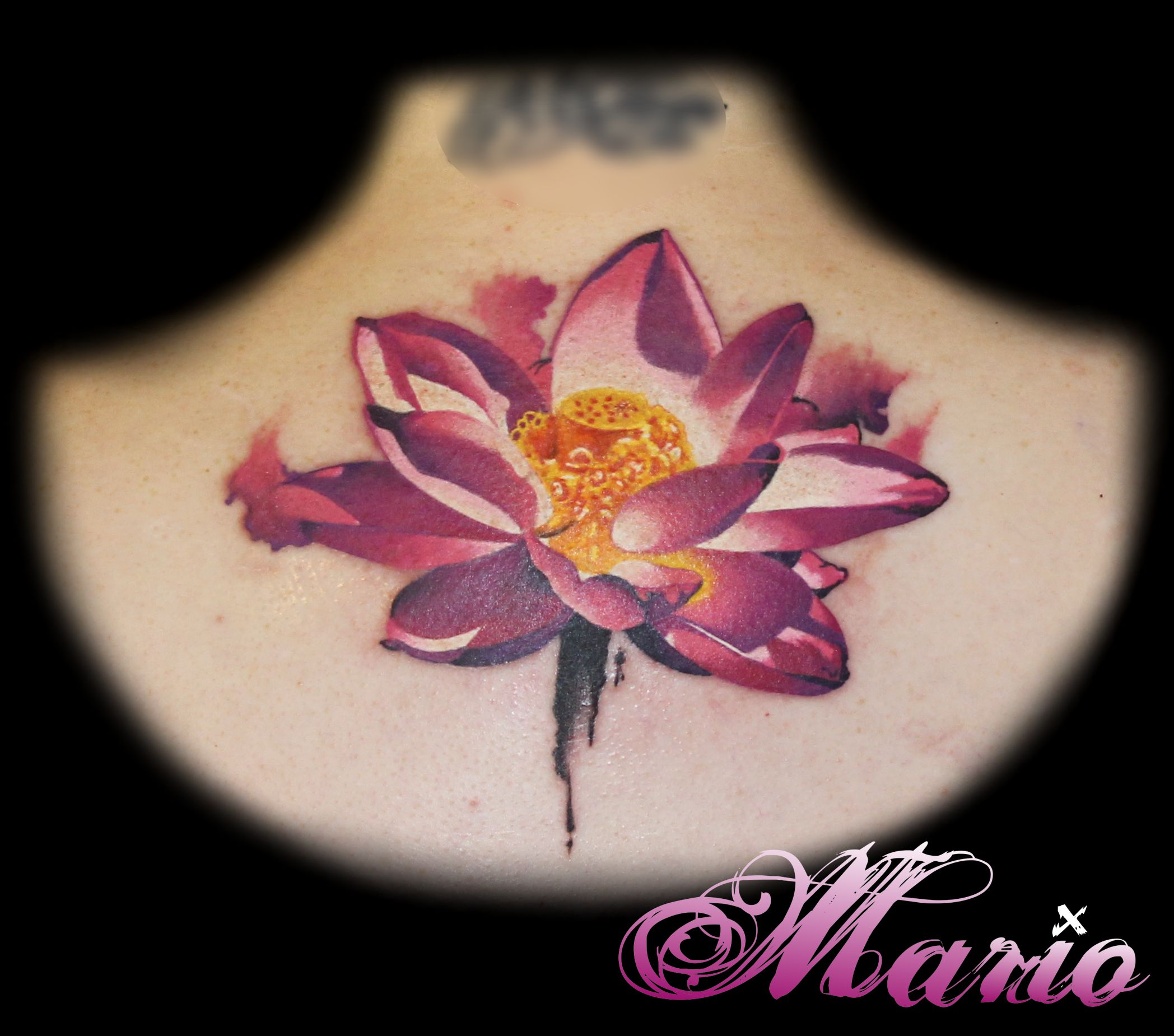 Browse worlds largest tattoo image gallery trueartists lotus flower tattoo color back izmirmasajfo