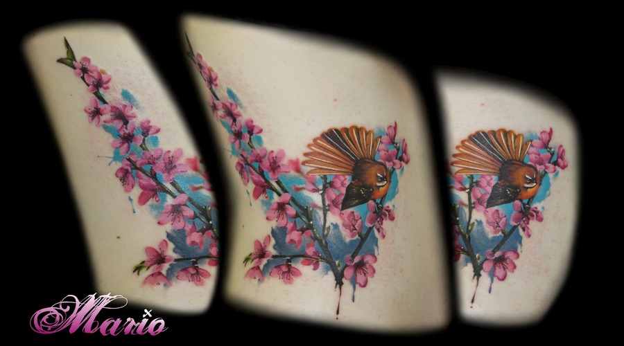 Cherry Blossom And Fantail Bird Color Ribs