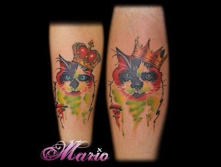 Cat Watercolour Color Forearm