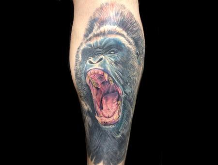 Gorilla King Kong Beast Color