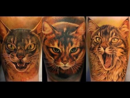 Cat Power Color Forearm