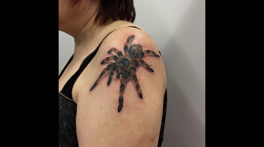 #Spider #Blackandgrey #Realistic #Realism Black Grey Shoulder
