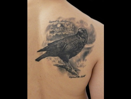 Crow Black Grey Back