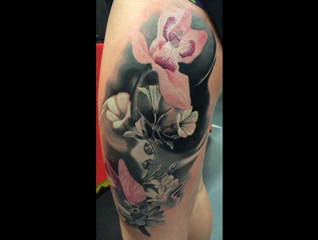 Flower Flowers Orchid Butterfly Beatle Color Thigh