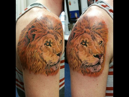 Lion  Realism  Photo Realism Color Arm