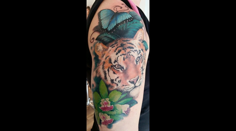 Tiger  Realism  Orchid  Butterfly  Color Color Arm