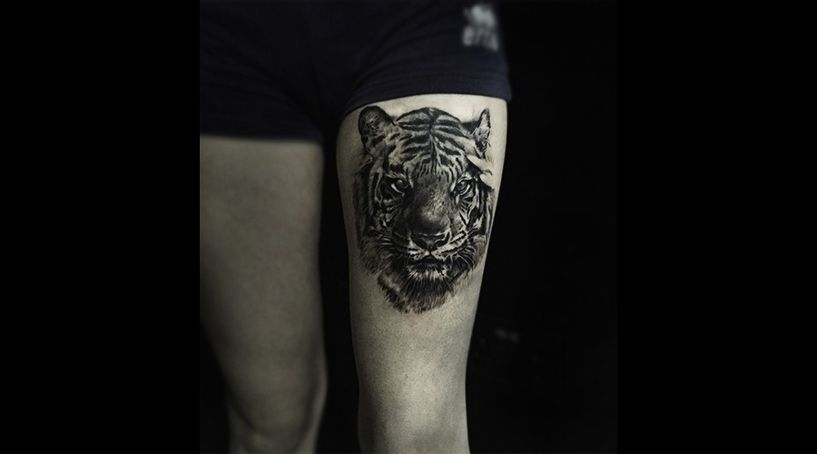 Tiger Black Grey