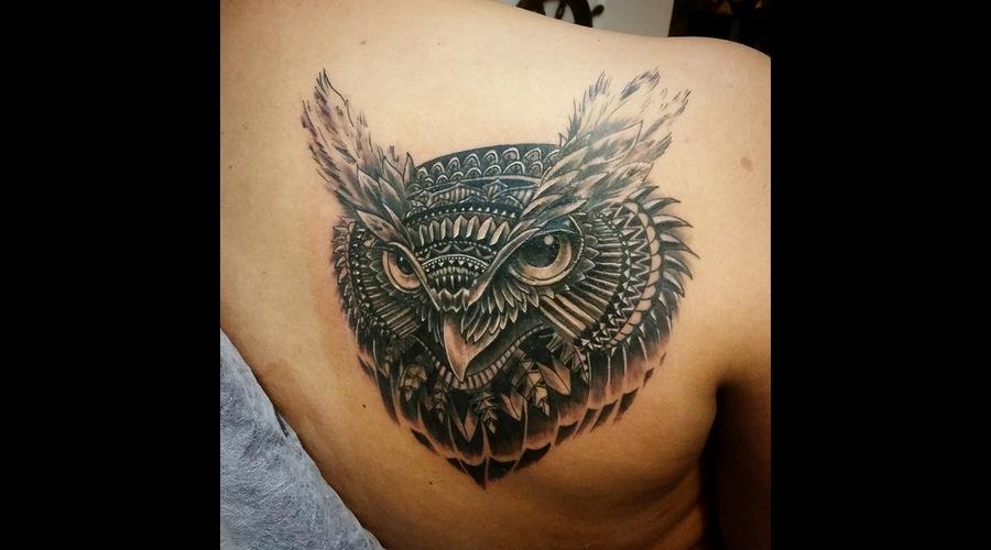 Owl   Design By Bioworkz Black Grey Back