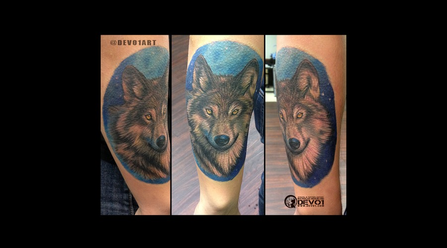 Wolf  Wolves  Color  Portrait  Custom Color Forearm